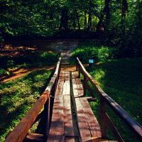 Wandelcoachen-stappenplan-life